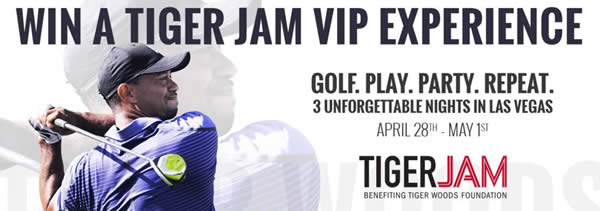 Tiger Woods VIP Experience