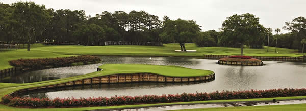 The Island Green TPC Sawgrass PLAYERS Championship