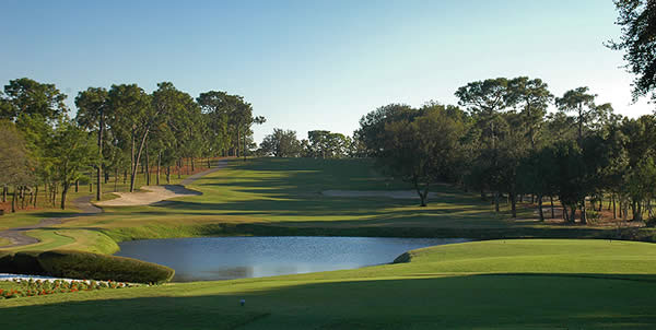 Innisbrook Resort - Copperhead Golf Course